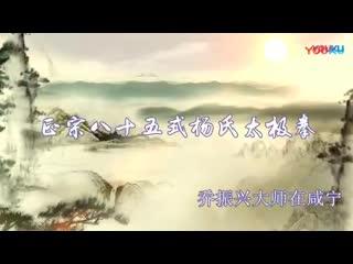 乔振兴大师正宗85式杨氏太极拳(带口令)-_高清