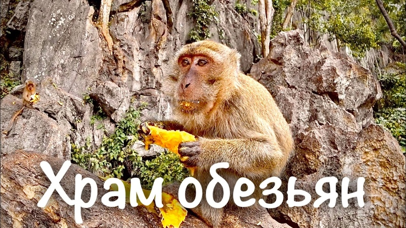 Пещерный храм обезьян Суван Куха Храм Лежащего Будды Wat Suwan Kuha Пхукет Пханг Нга Таиланд