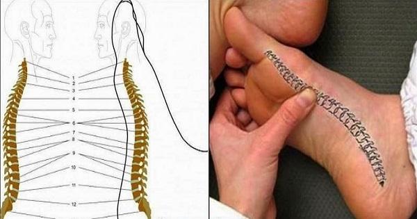 Болит спина? Благодаря этому чудодейственному массажу стоп ты избавишься от проблемы!, изображение №2