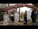 Чонг Ли разбивает лед. Фильм Кровавый спорт. 1988 год