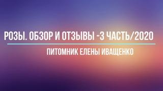 Часть 3/2020. Обзор и Отзывы о Розах Елены Иващенко