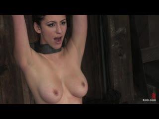 Princess Donna bondage bdsm spank spanking slave milf master