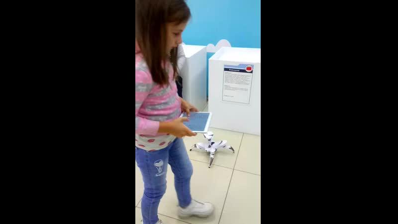 Повелитель робота