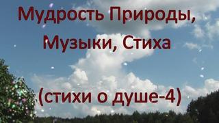 Мудрость Природы, Музыки, Стиха (стихи о душе-4).