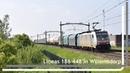 Lineas 186 448 komt met UC door Willemsdorp