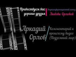 Комментарии_Аркадия_Орлова_Яков_Брюс.mp4
