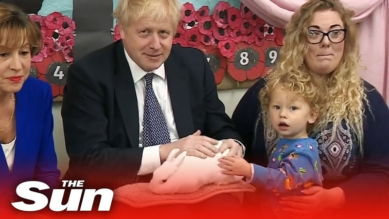 Boris Johnson school visit PM cuddles a rabbit and joins singalong on the election campaign trail
