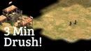 INSTANT Drush On Steppe
