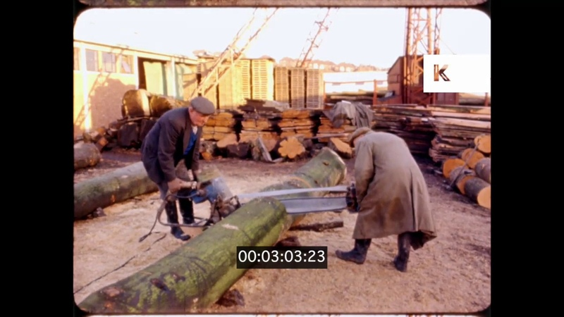 1960s UK Lumber Mill Sawing Tree Trunks 16mm