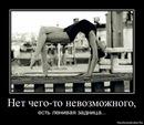 Наталья Алексеева фотография #16
