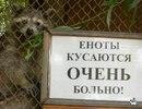 Фотоальбом Анастасии Лэнгли