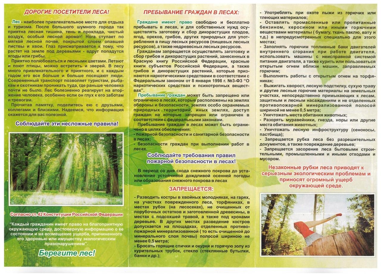 Правил пожарной безопасности на территории лесного фонда Российской Федерации 20.05