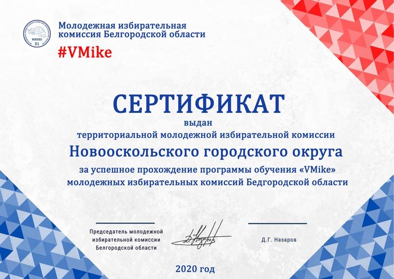 Итоги программы обучения молодежных избирательных комиссий Белгородской области «VMike», изображение №13
