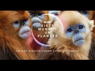 BBC. Семь миров, одна планета 2019 г. - Документальный/Научно-познавательный - 52 мин