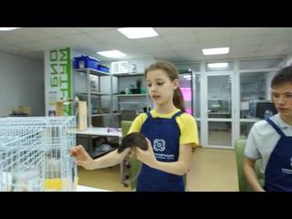 Видео от Телеканал «Краснодар». Новости города