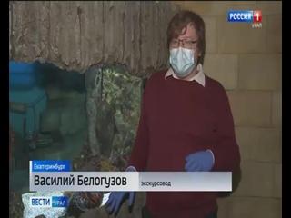 Вести Урал. Сюжет об Океанариуме
