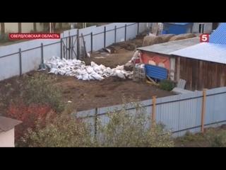 Животноводческая ферма с переулка Авиационного в Б...