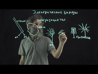 Цитология. Лекция 35. Электрические заряды