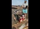 Видео от Anti Шанти