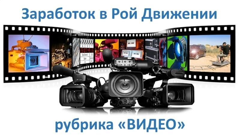 Заработок в Рой Движении рубрика Видео