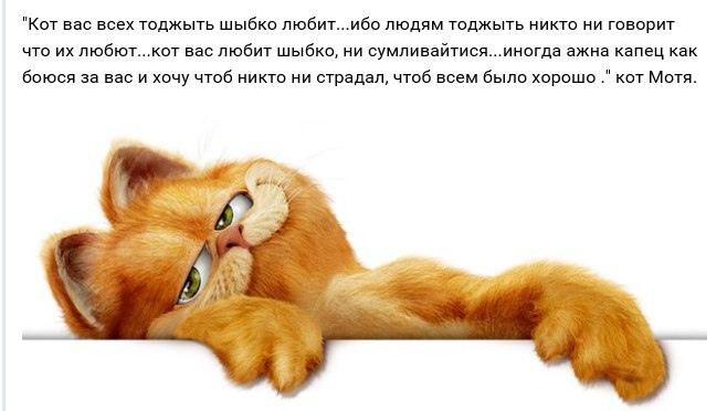 Блог Кота Моти  - Страница 4 RmwJxjbstHo