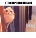 Гатаулин Ден | Москва | 38