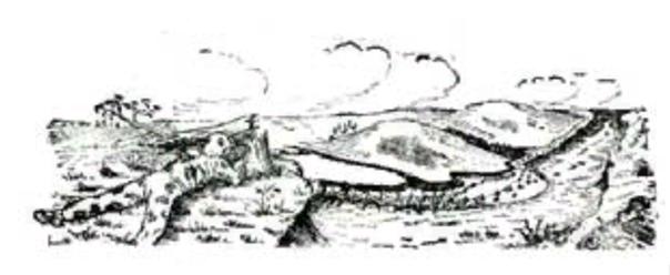 Выбор и оборудование огневой позиции снайпера, изображение №5
