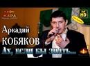 Концерт / Аркадий КОБЯКОВ - Ах, если бы знать / Н. Новгород, 21.02.2015