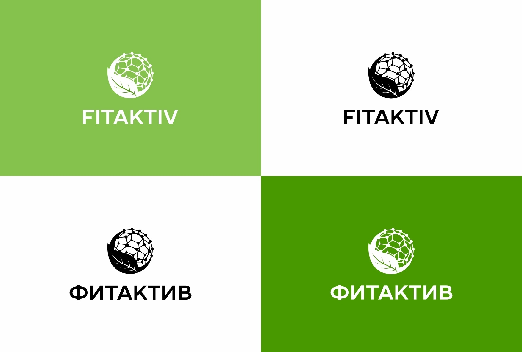 Цветовые решения для логотипа FITAKTIV