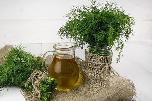 Укроп, мед, валериана  и сосуды без изъяна