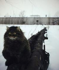 Тимур Королёв фото №5