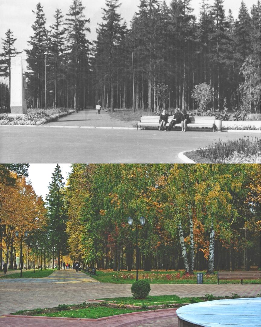 Парк 50-летия Советской власти 1970 г. / 2020 г.