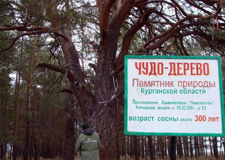 Звериноголовский район – разнообразие природных и исторических комплексов !, изображение №3