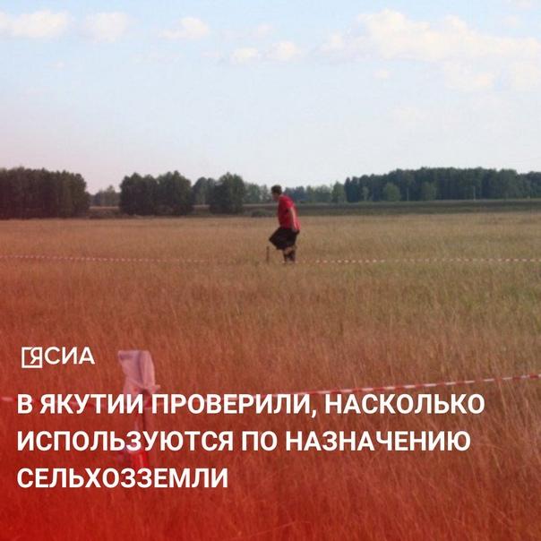 В области государственного земельного надзора Упра...