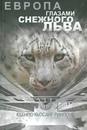 Сафин Андрей | Санкт-Петербург | 14