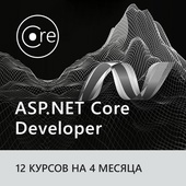 ASP.NET Core Developer