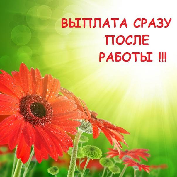 пос. Парголово, Выборгское ш., д. 216    ДЕВУШКИ...