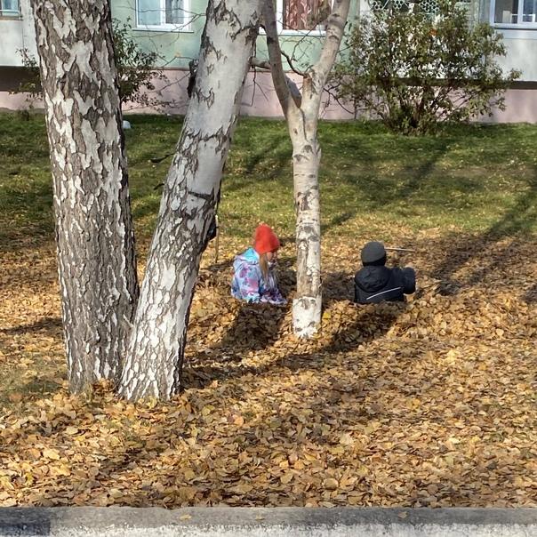 Соорудили себе шалаш из листьев и кайфуют 😃класс 👍...