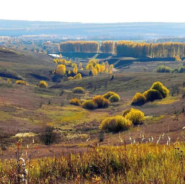 Осенний пейзаж. #сурское #сурскийрайон