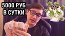 Ерохин Дмитрий | Санкт-Петербург | 31