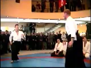 Martial Arts - aikido vs karate