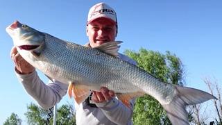 11 НЕЗАМЕНИМЫХ ВЕЩЕЙ на рыбалке, без которых не обойтись! Как ПОЙМАТЬ ТРОФЕЙНОГО ЖЕРЕХА?