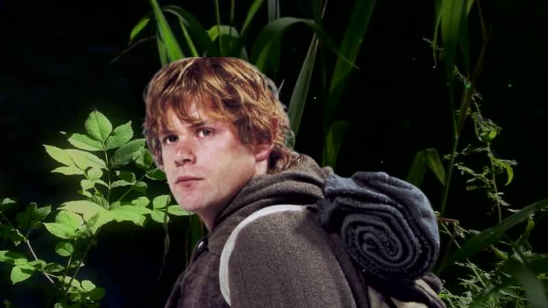 Мог ли хоббит Сэм заменить Фродо с Кольцом