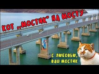 Крымский мост()Шикарная картина на мосту!Кот Мостик и его друзья!Красота спасёт мир!