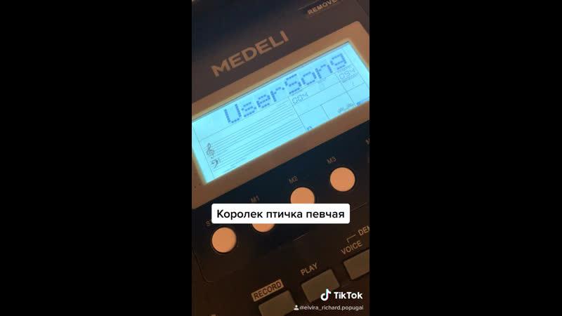 Королёк птичка певчая пиано Дадашева Э А Дадашева М А