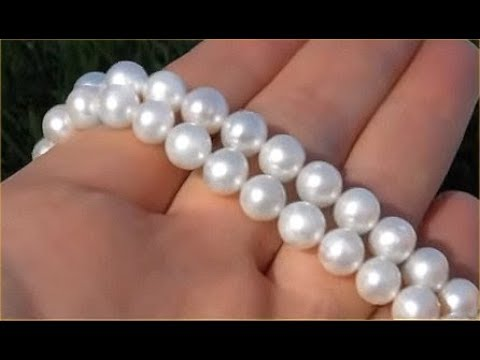 GIA Certified Mikimoto Japanese Saltwater Akoya Pearl Necklace Gold Clasp Up For Auction