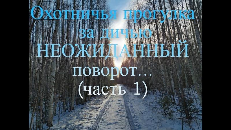 Охотничья прогулка за дичью Тетерева Кабаны и большая НЕОЖИДАННОСТЬ часть 1