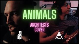 ANIMALS [Clean] - Architects (Jordan Radvansky Cover feat. Alae Cohen)