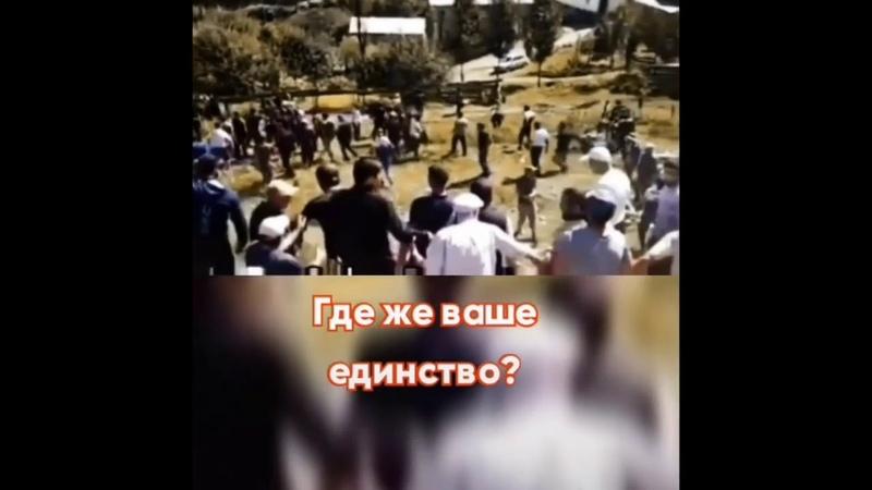 Горцы Кавказцы хватит уже позориться и деградировать