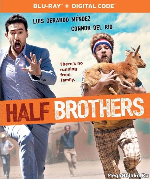 Сводные братья / Half Brothers (2020/BDRip/HDRip)